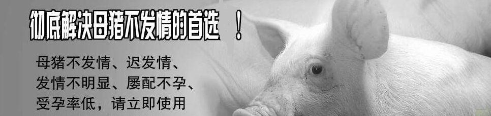 母猪不发情用初源多肽