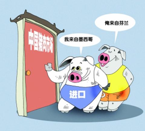 猪价下跌|进口猪肉