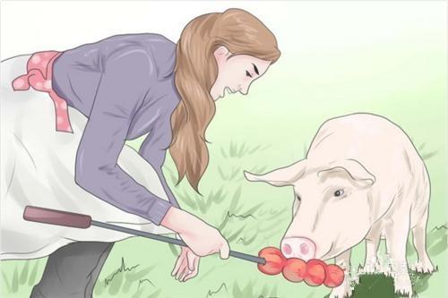在农村养猪赚钱吗