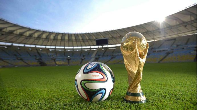 世界杯|养猪
