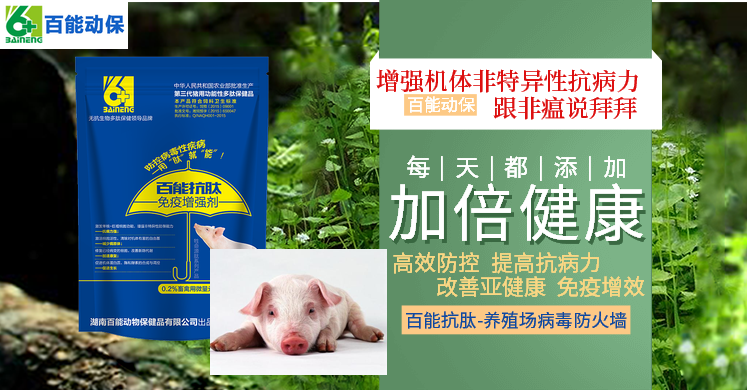 免疫增强剂 百能抗肽 防治非洲猪瘟